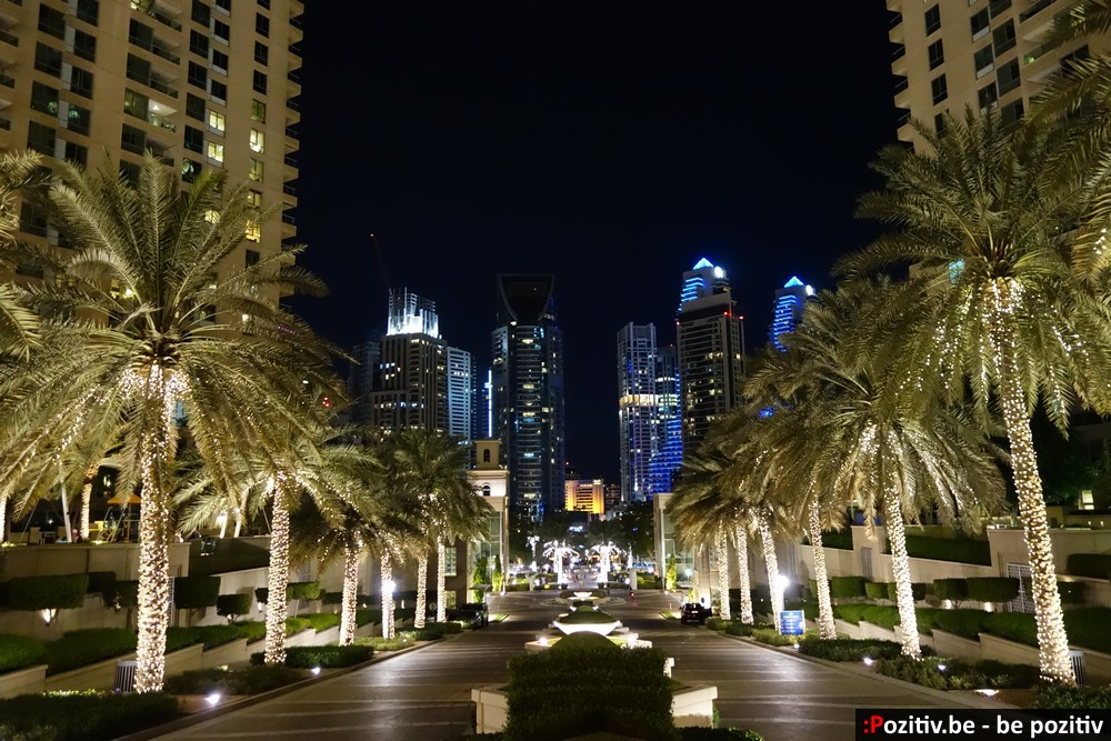 Вечерний Дубай Марина