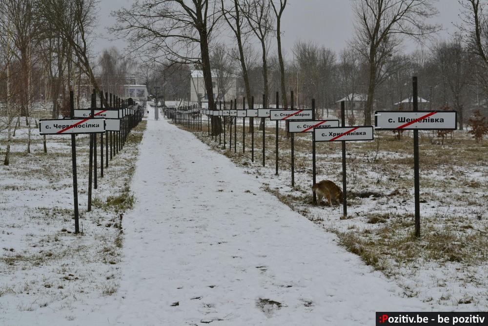 Чернобыль, парк-музей, собака