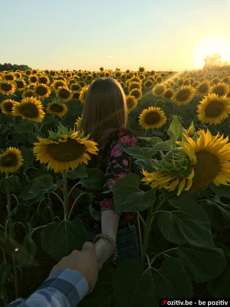 девушка в поле в подсолнухах