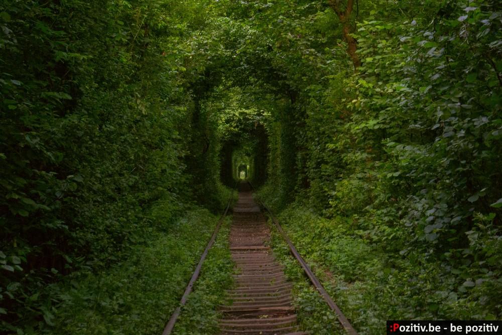 Клевань, тоннель любви